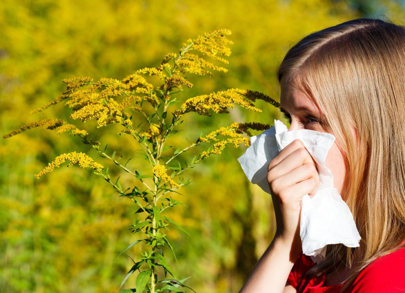 How to Detect and Treat Fall Allergies Naturally