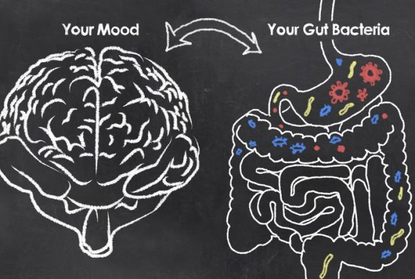 What is the Mind Gut Connection?