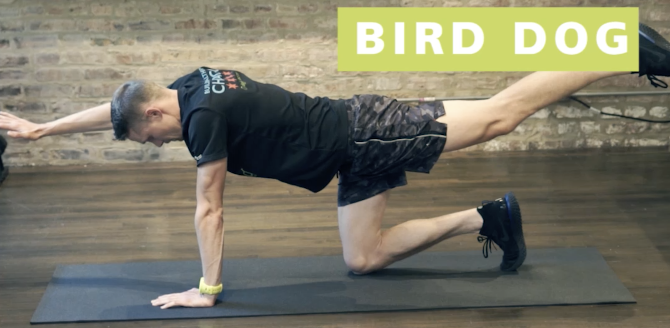Core Exercises for Runners: Bird Dog & Dead Bug