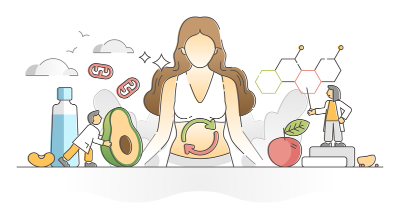 Mastering Your Metabolism and Weight Loss with Functional Medicine   WEBINAR